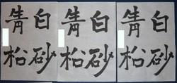 kyosho_hankai0907.jpg